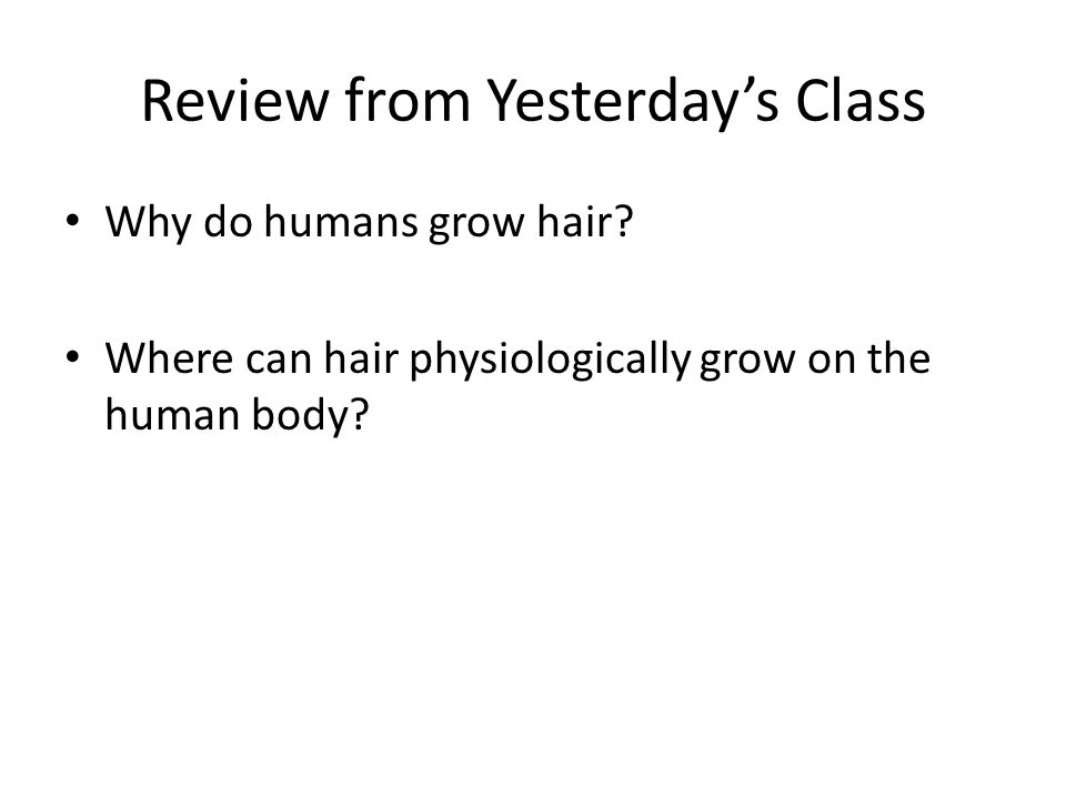Review from Yesterday's Class