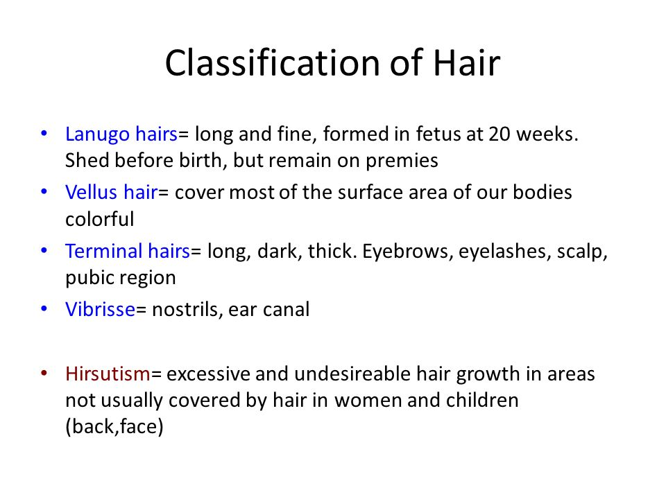 Classification of Hair