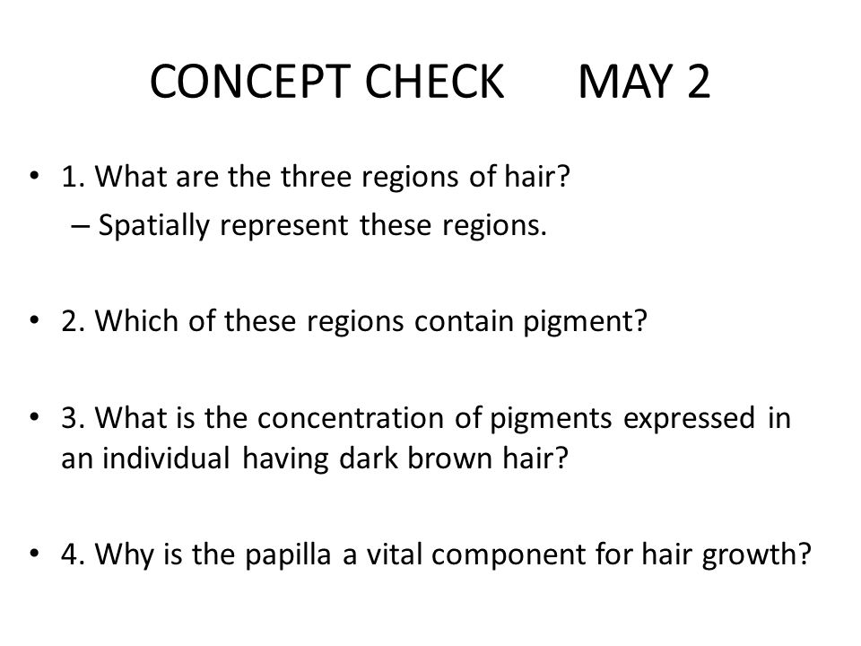 CONCEPT CHECK MAY 2 1. What are the three regions of hair