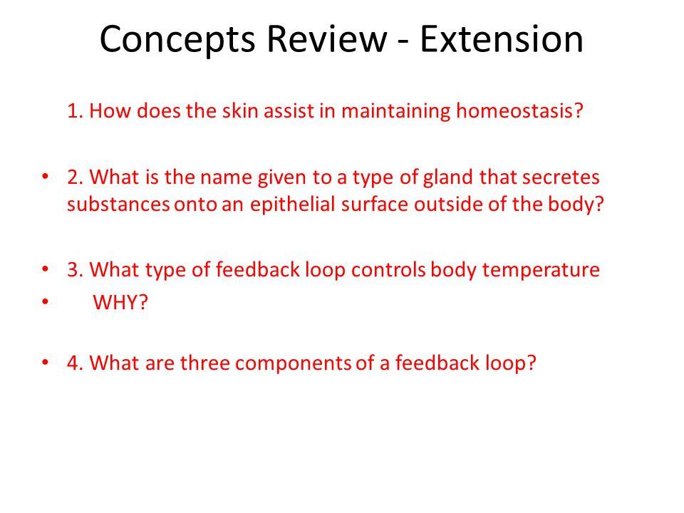 Concepts Review - Extension