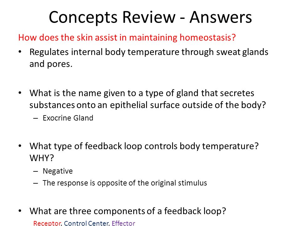 Concepts Review - Answers