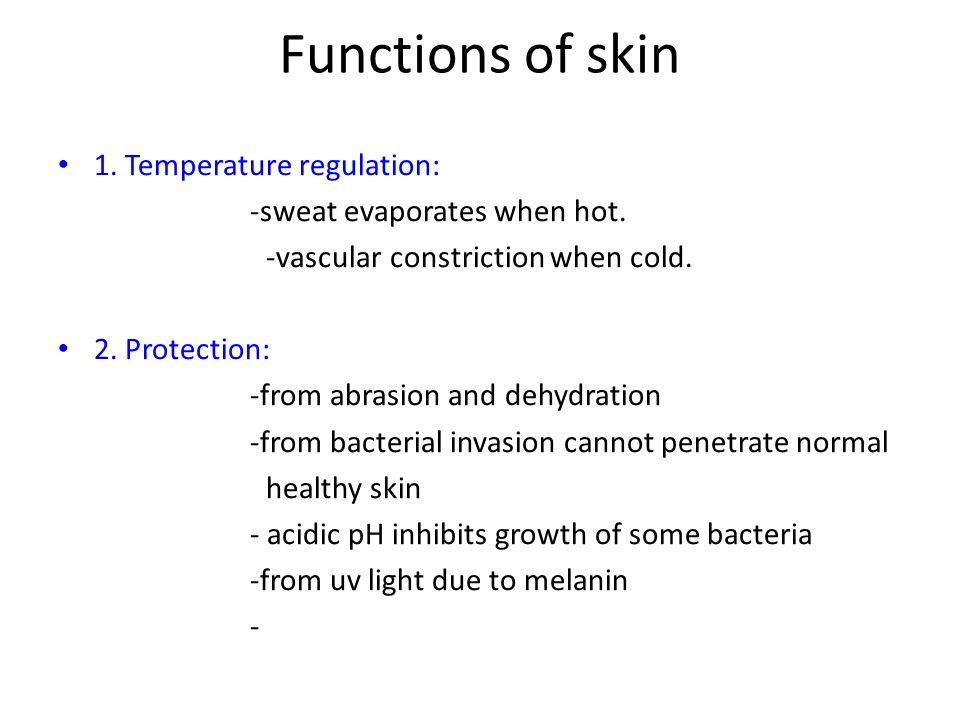 Functions of skin 1. Temperature regulation: