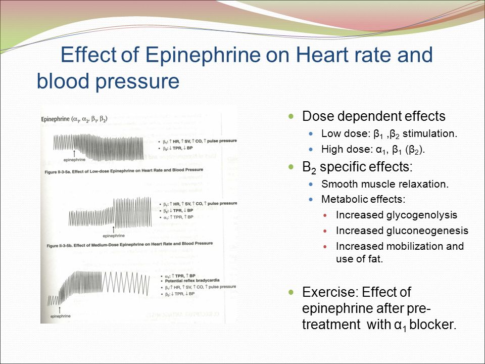 epinephrine effect of physical activity Although norepinephrine and epinephrine are released together by the adrenal medulla, some of their effects are divergent due to their differential and to prepare the brain to control the anticipated physical activity direct effects of epinephrine on energy the effect of epinephrine in.