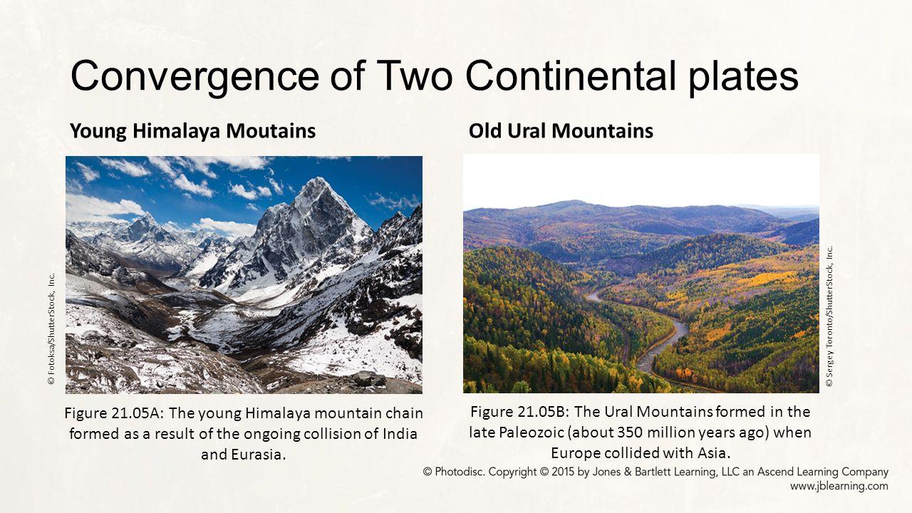 Convergent Plate Boundaries: Part I - ppt download