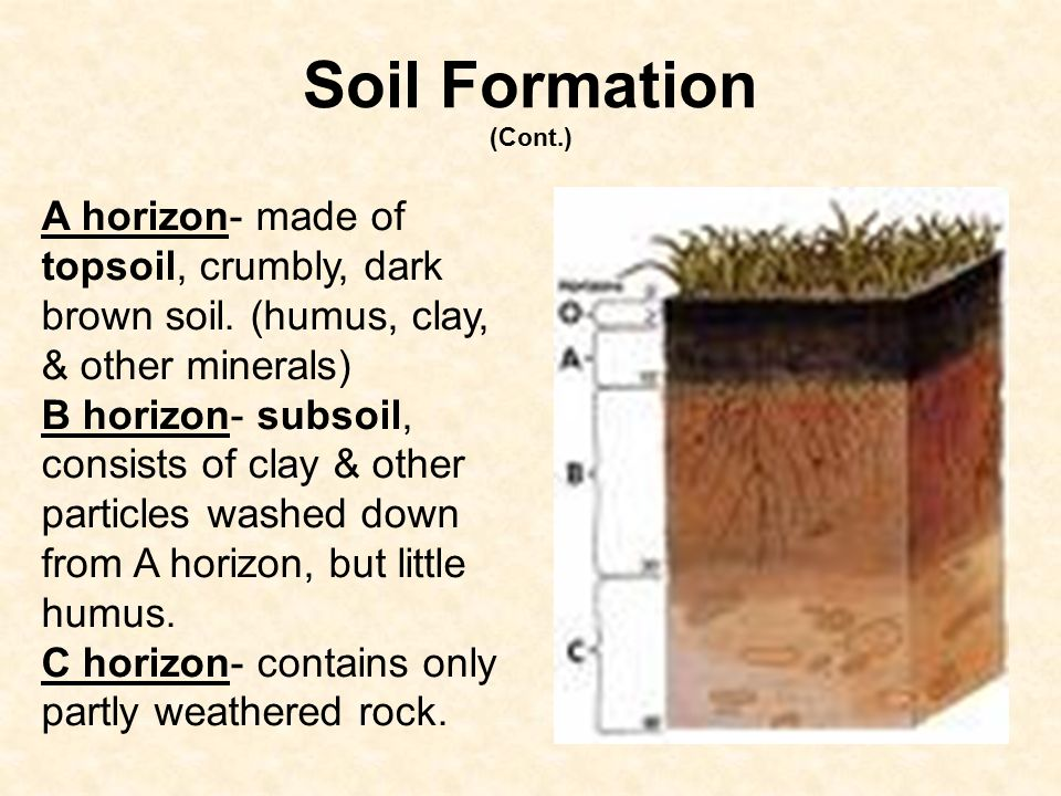How soil forms 6 e 2 3 explain how the formation of soil for Soil formation