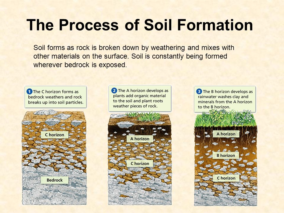 How soil forms 6 e 2 3 explain how the formation of soil for Explain the formation of soil