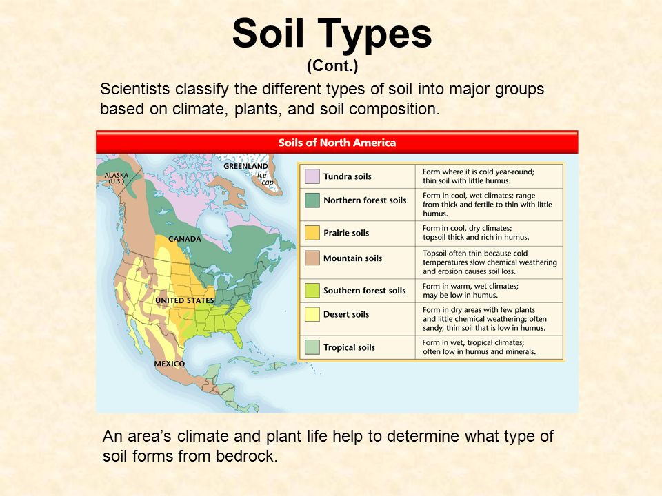 How soil forms 6 e 2 3 explain how the formation of soil for Why are soils different