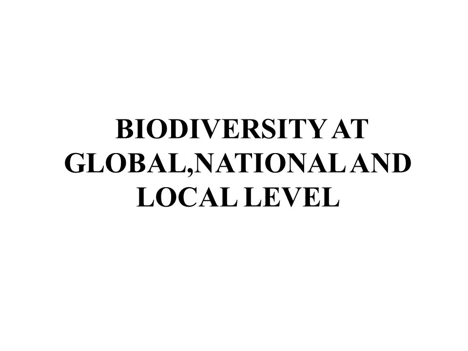 biodiversity at global level pdf