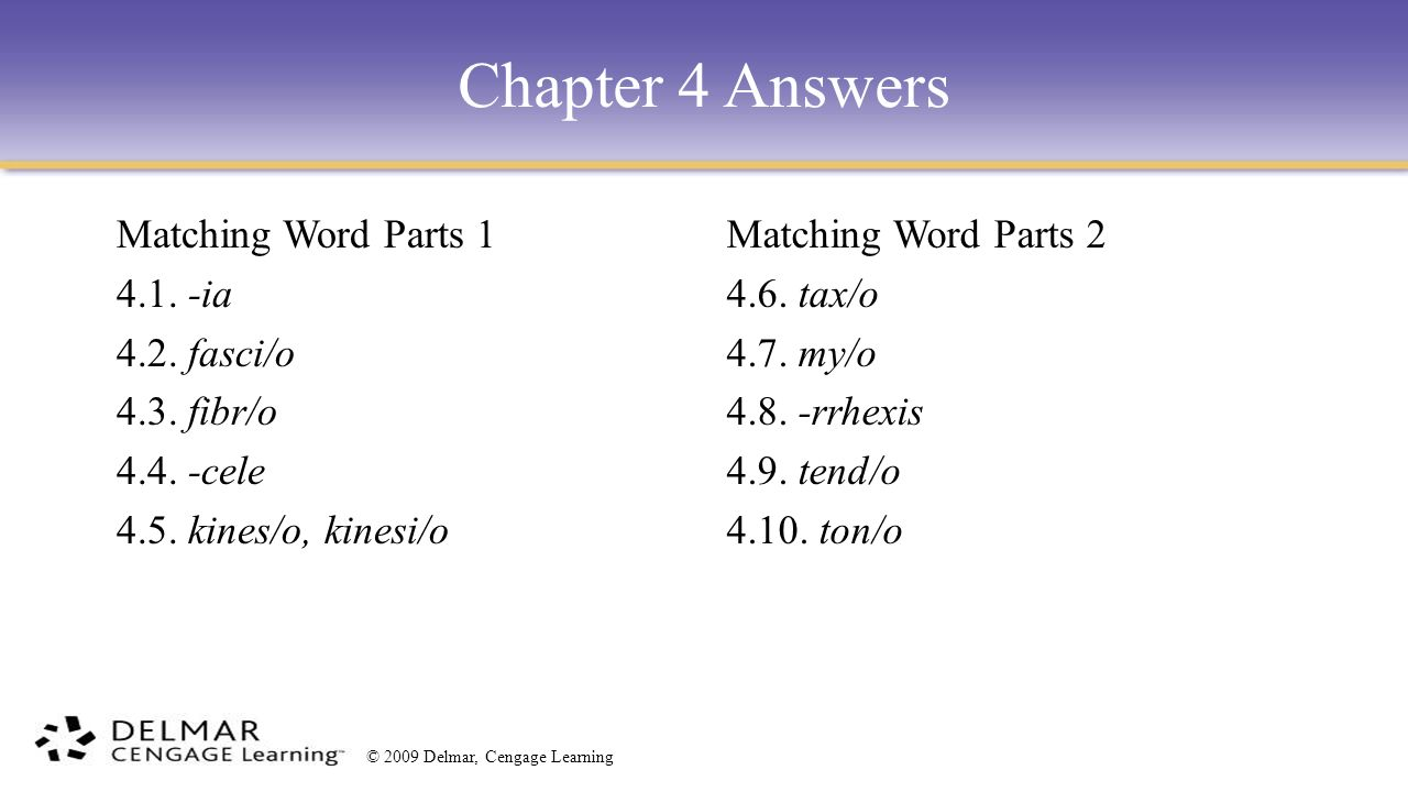 chapter answer