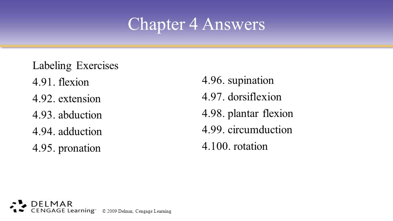 Chapter 4 The Muscular System. - ppt video online download