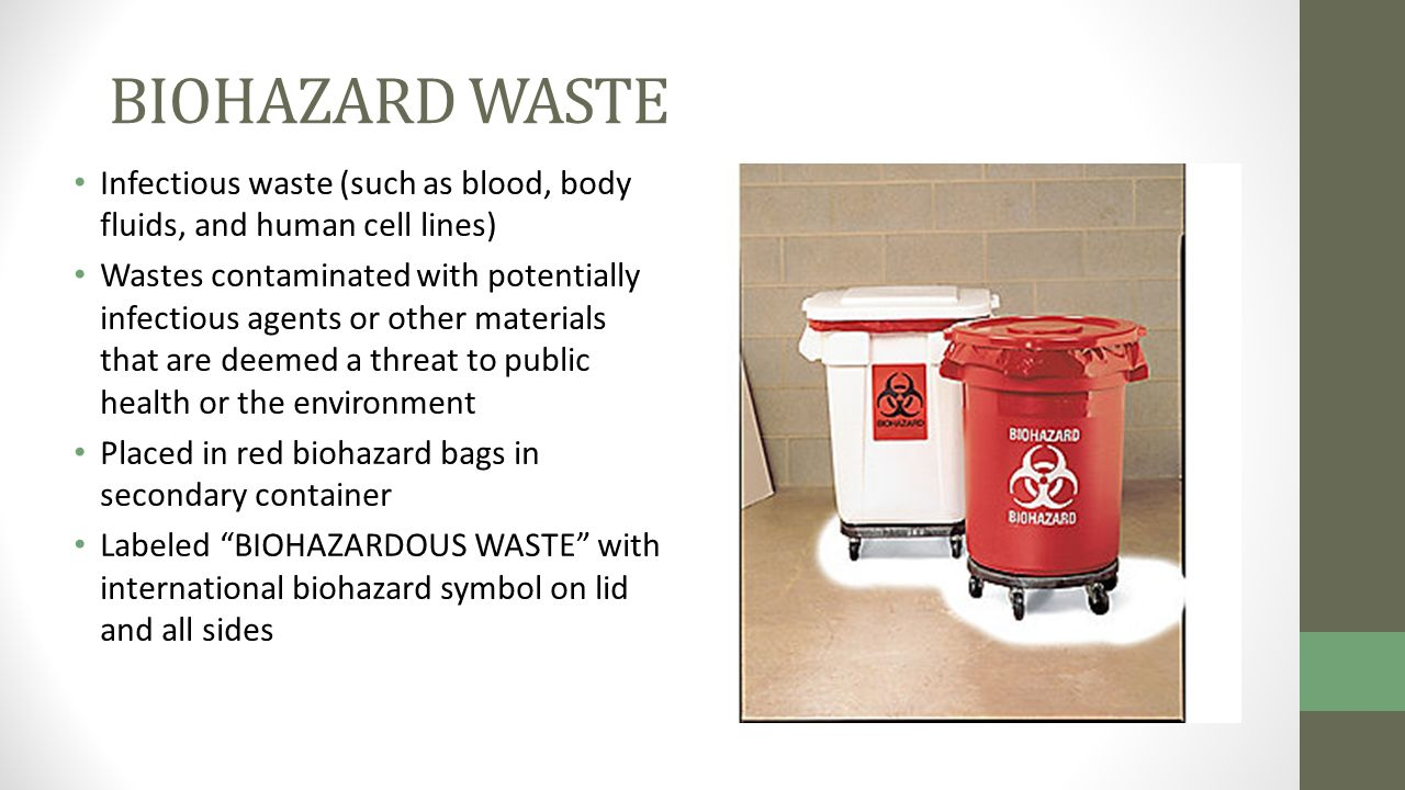 Human waste material - photo#46
