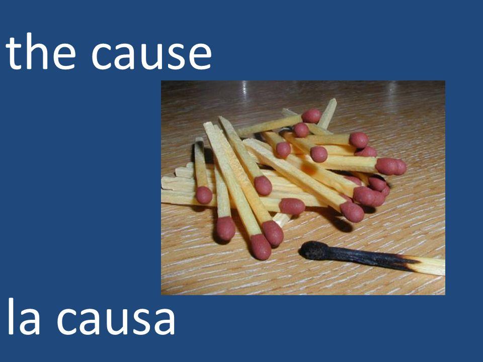 the cause la causa