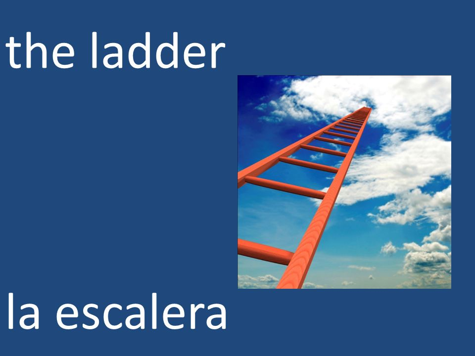 the ladder la escalera