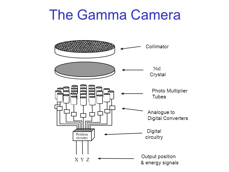 Harry Beck Designer Of Iconic London Underground Map moreover Live Streaming in addition Prevent Ip Camera Hacking also 6122595391 moreover Mobile Application Development Approaches Strategies Best Practices Part 4. on how a camera works diagram
