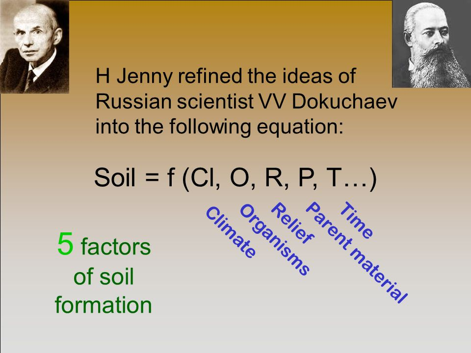 Understanding soil formation ppt video online download for Soil forming factors