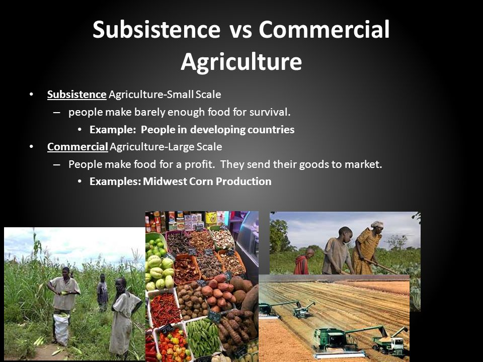 commercial agriculture vs subsistence agriculture The novelty of the article is to disaggregate primary agricultural  agriculture, a  shift from subsistence to commercial agriculture would take.