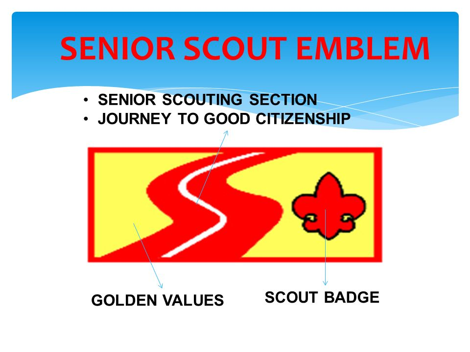 SENIOR SCOUT EMBLEM SENIOR SCOUTING SECTION