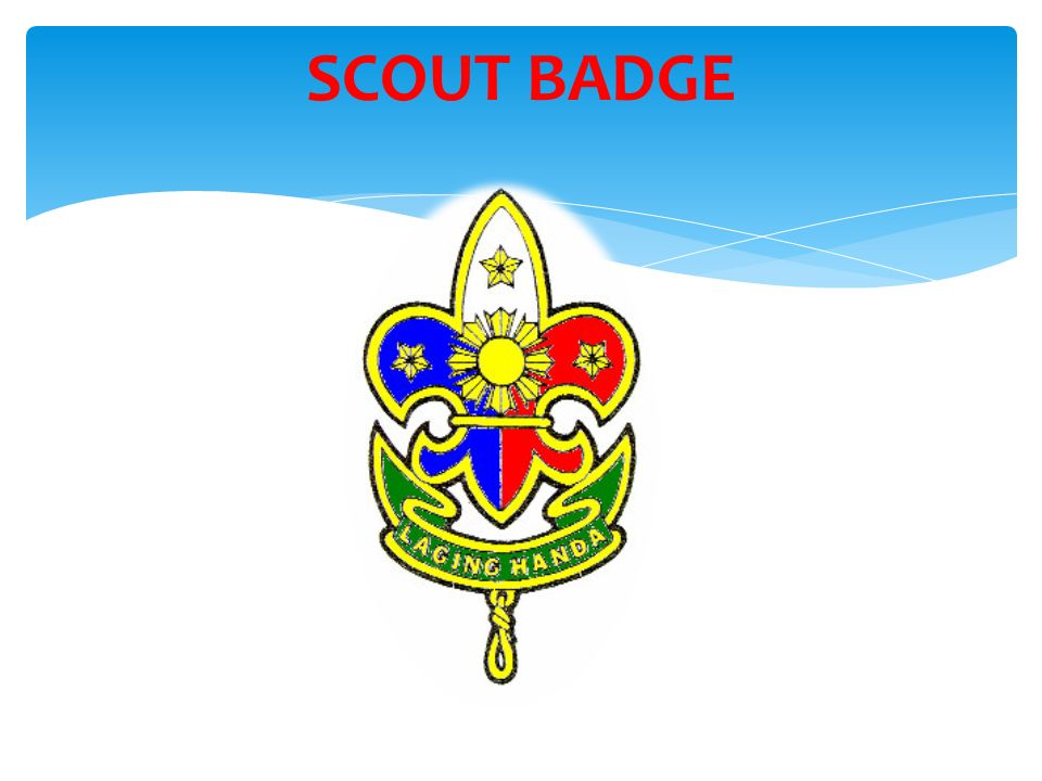 SCOUT BADGE