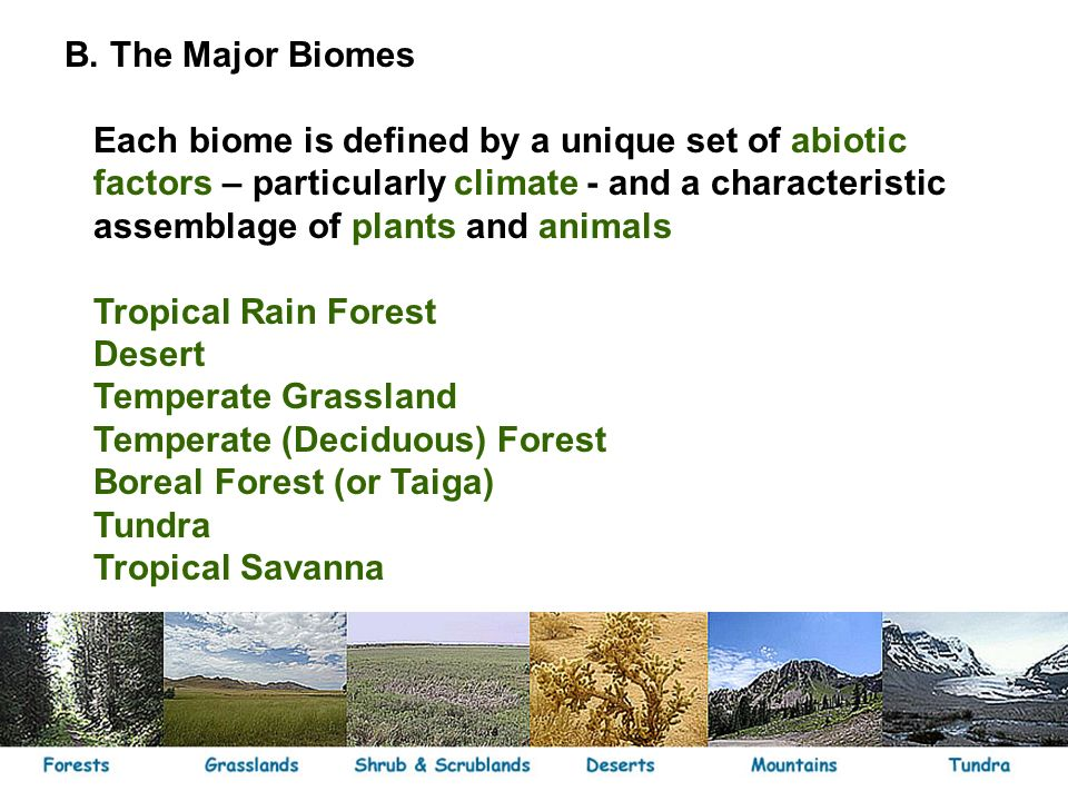 a definition of biomes Definition the largest unit of ecological classification that is convenient to recognize below the entire globe terrestrial biomes are typically based on dominant vegetation structure (eg, forest, grassland.