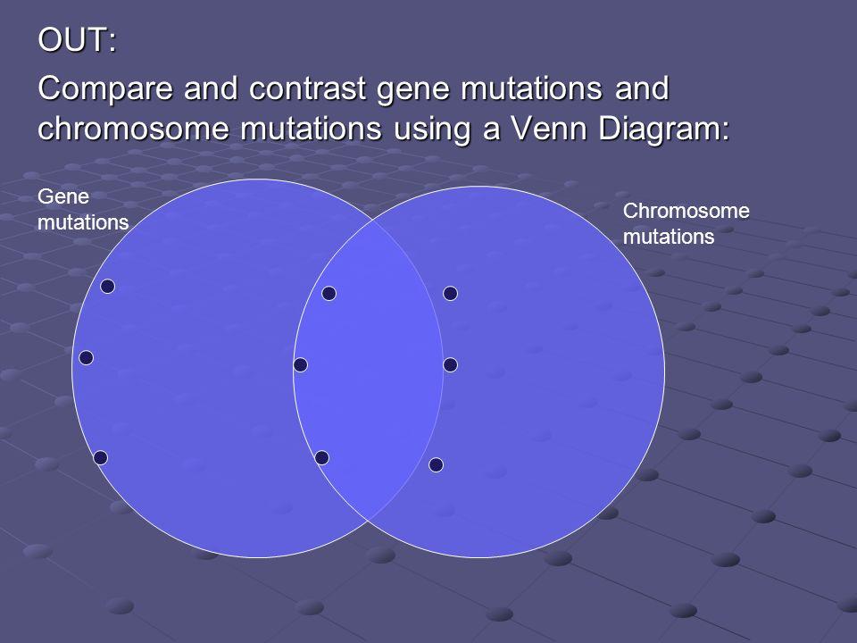 Venn Diagram Online Gene Wiring Diagrams