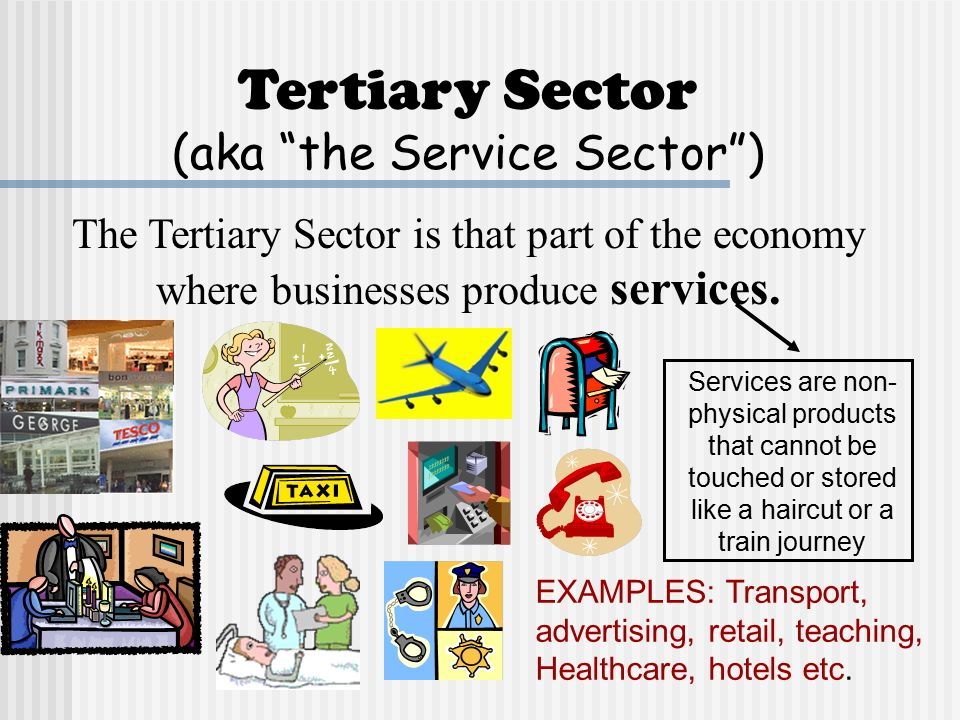 purchasing tertiary sector of the economy The quaternary sector is said to the intellectual aspect of the economy it includes education, training, the development of technology, and research and development it is the process which enables entrepreneurs to innovate better manufacturing processes and improve the quality of services offered in the economy.