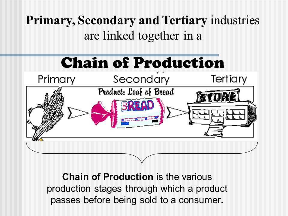 primary secondary and tertiary economy This course will cover three basic sectors of economy that is primary, secondary and tertiary alongwith their importance and problems in recent time we will also learn about government.