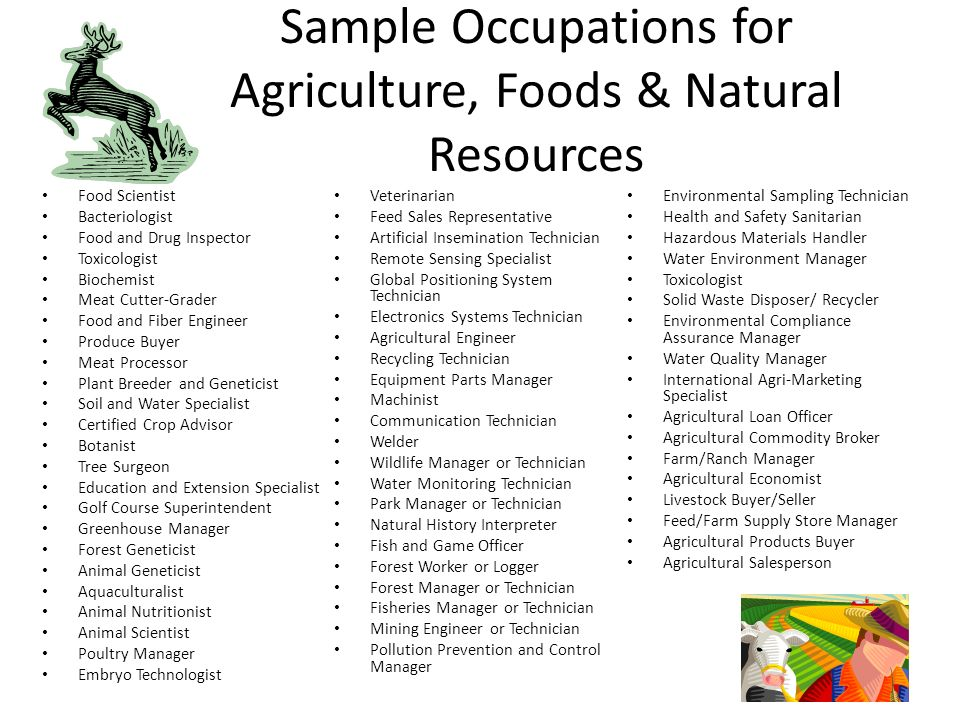 Quality Natural Foods Jobs