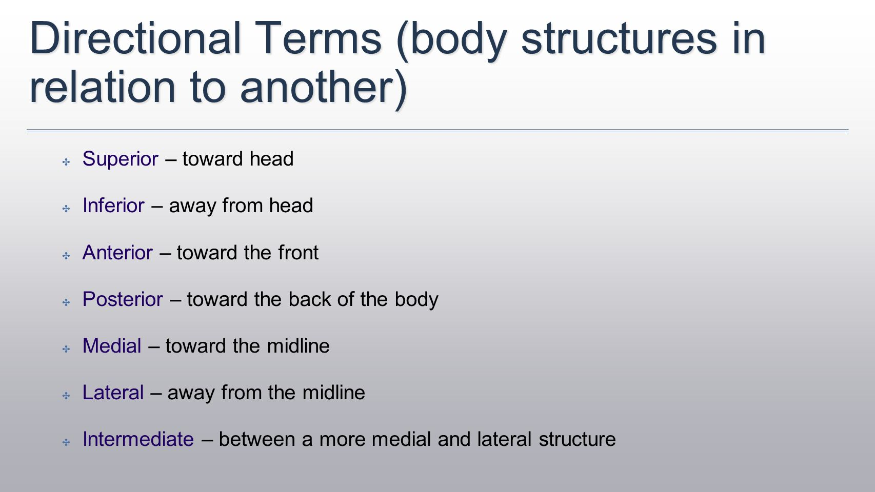 Anatomical directional terms worksheet answers