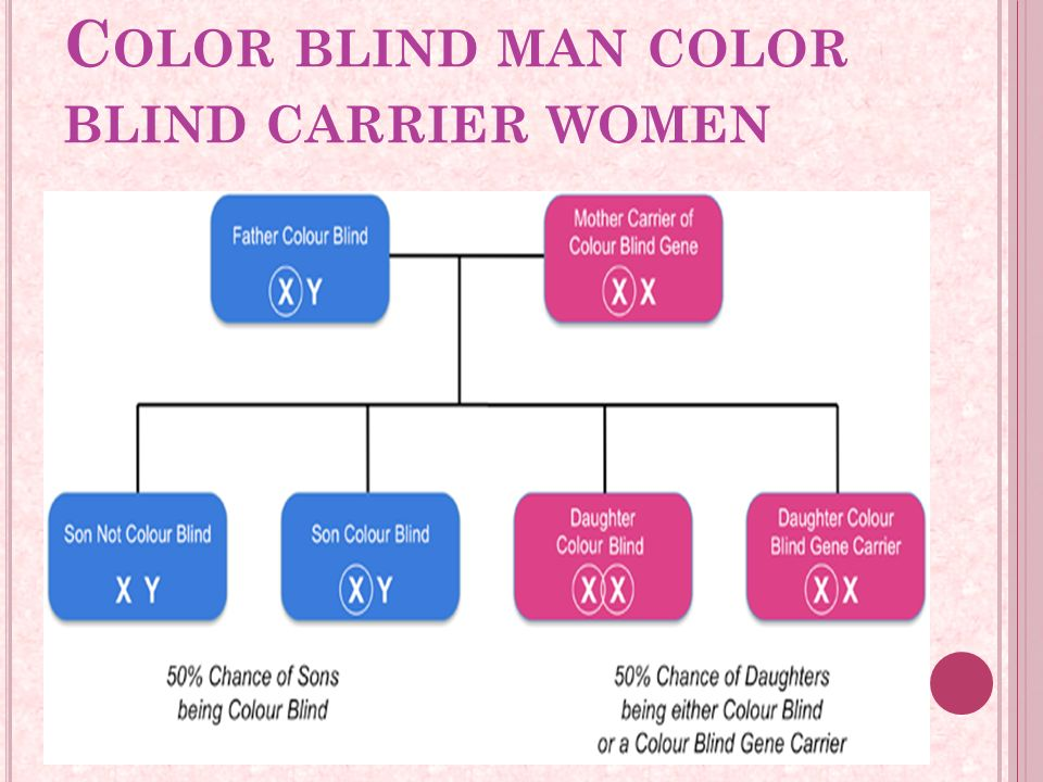 Colour Blindness Ppt Download
