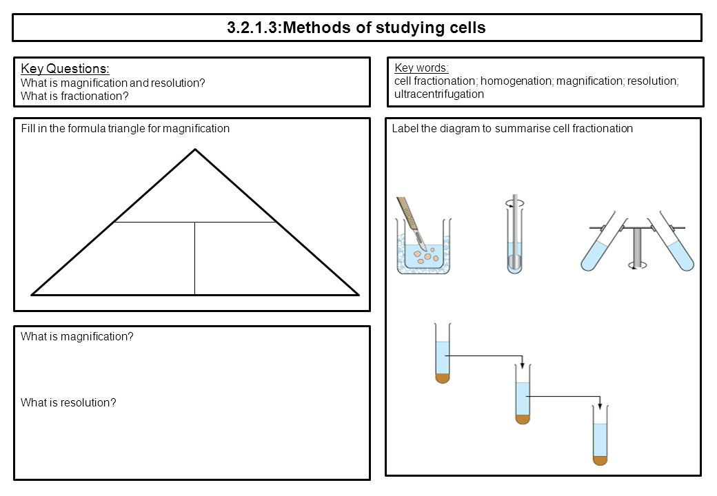 methods for studying cells in the The methods for studying microorganisms  (discrete mounds of cells) on solid media,  bacterial culture methods ppt.