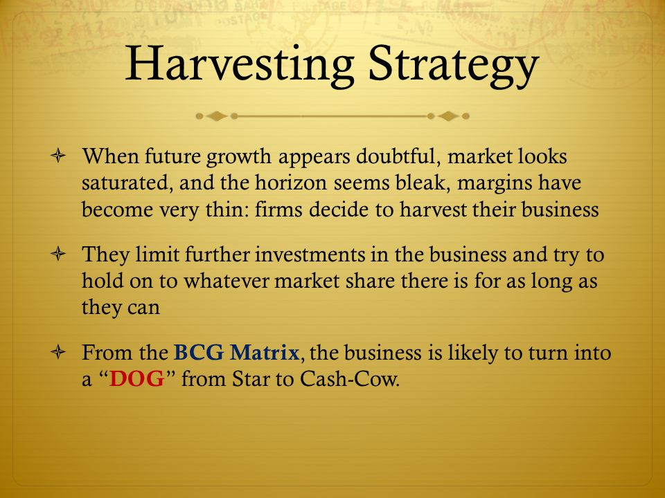 bcg on strategy pdf download