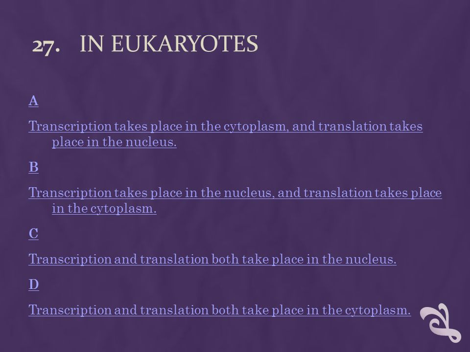 7 Transcription The Synthesis Of Rna From A Dna Template Like Replication Takes Place Inside Nucleus Eukaryotes Copy