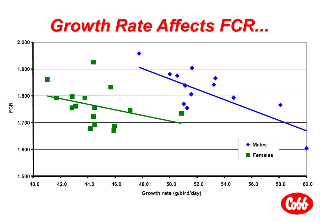importance of feed conversion ratio pdf
