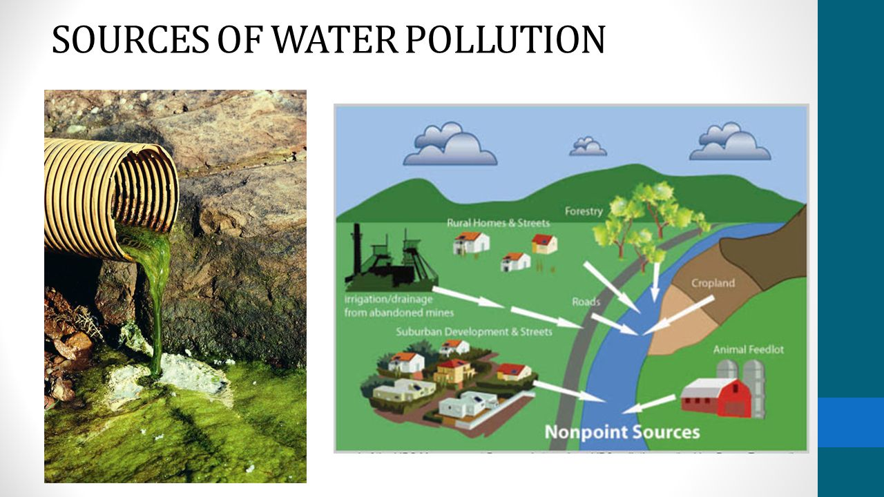 Water Wastewater And Water Pollution Ppt Video Online