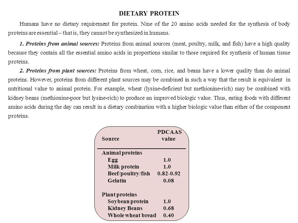 dietary sources of protein pdf