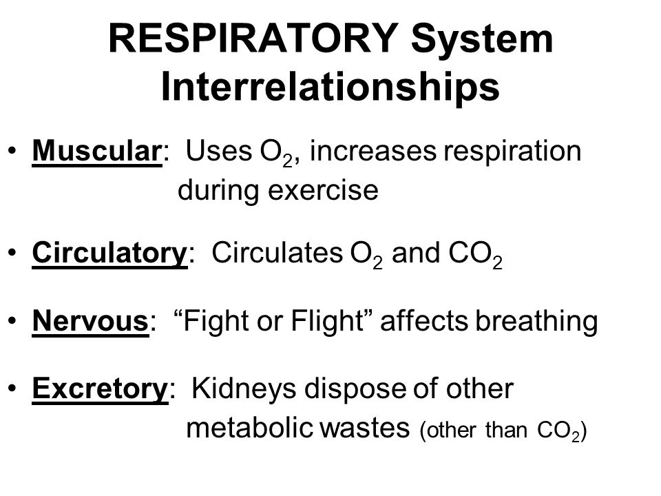 Nutrition and Respiratory Health—Feature Review