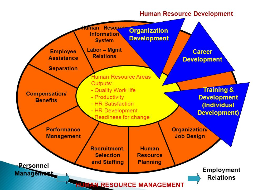 human resource management and hr