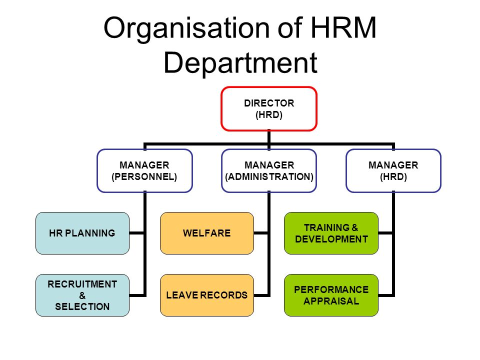 10 Reasons HR Is Important to an Organization