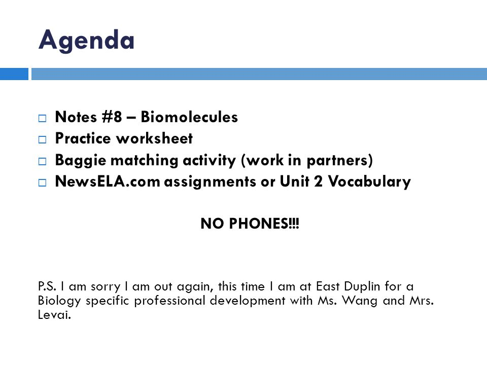 Agenda Notes 8 Biomolecules Practice worksheet ppt download – Biomolecule Worksheet
