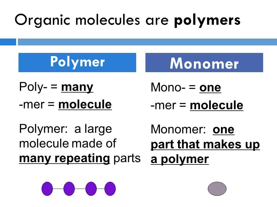 Agenda Notes 8 Biomolecules Practice worksheet ppt download – Organic Molecules Worksheet
