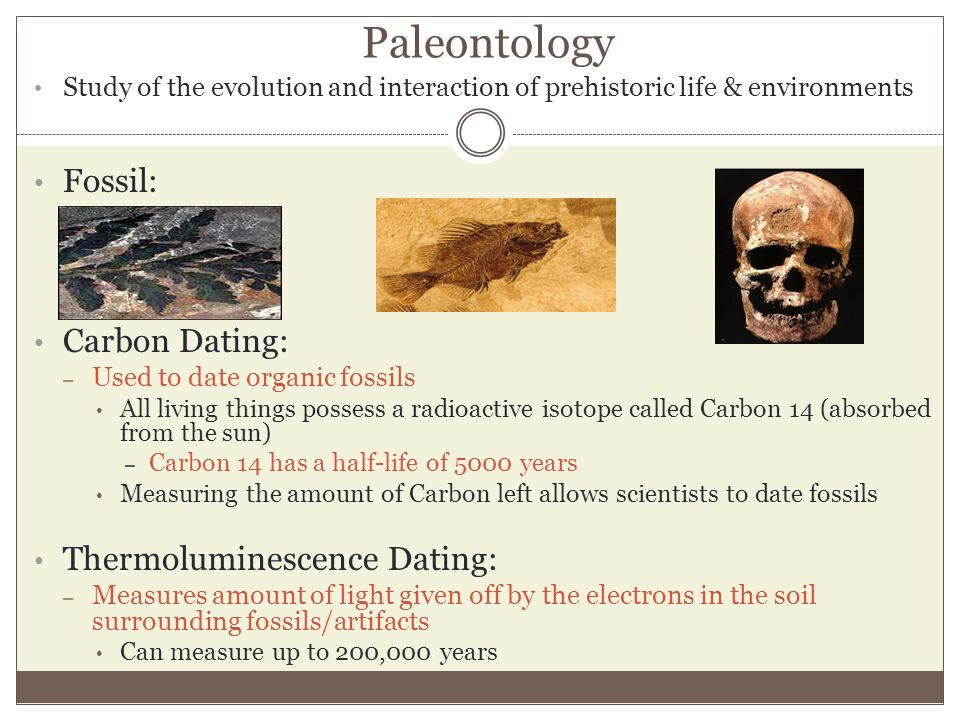 Carbon dating methods and fossils of dinosaurs
