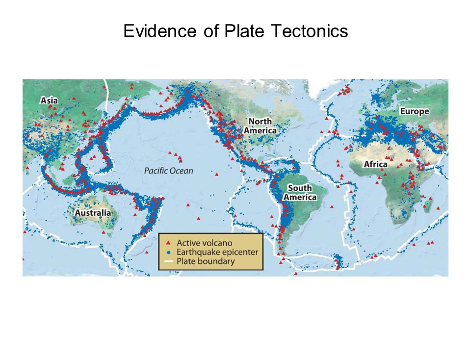 evidence for plate tectonics essay Fossil distribution one of the first lines of evidence suggesting the existence of plate tectonics was the discovery of very similar fossils in rock masses separated by vast distances and.