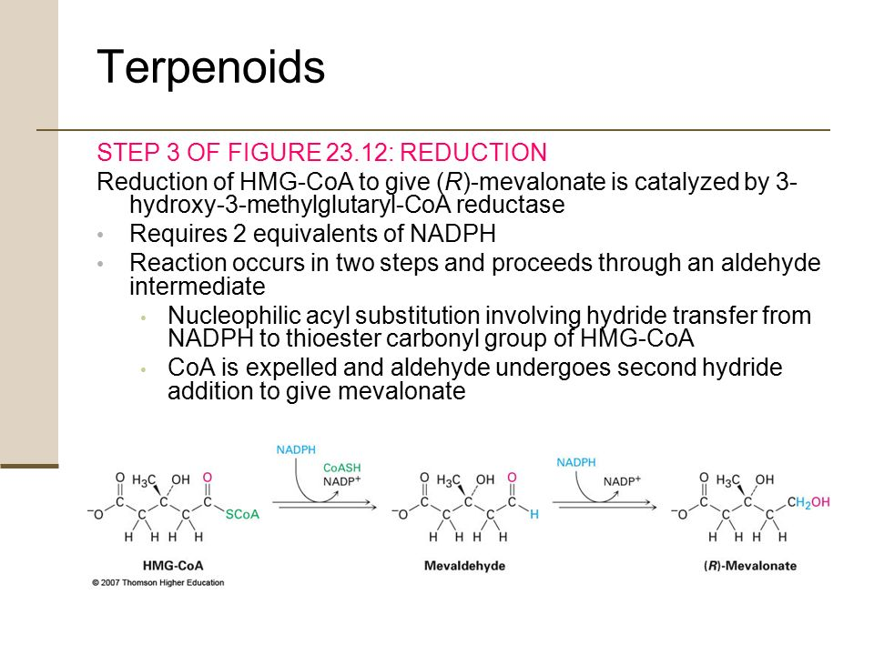 chapter 12 terpenoids and steroids