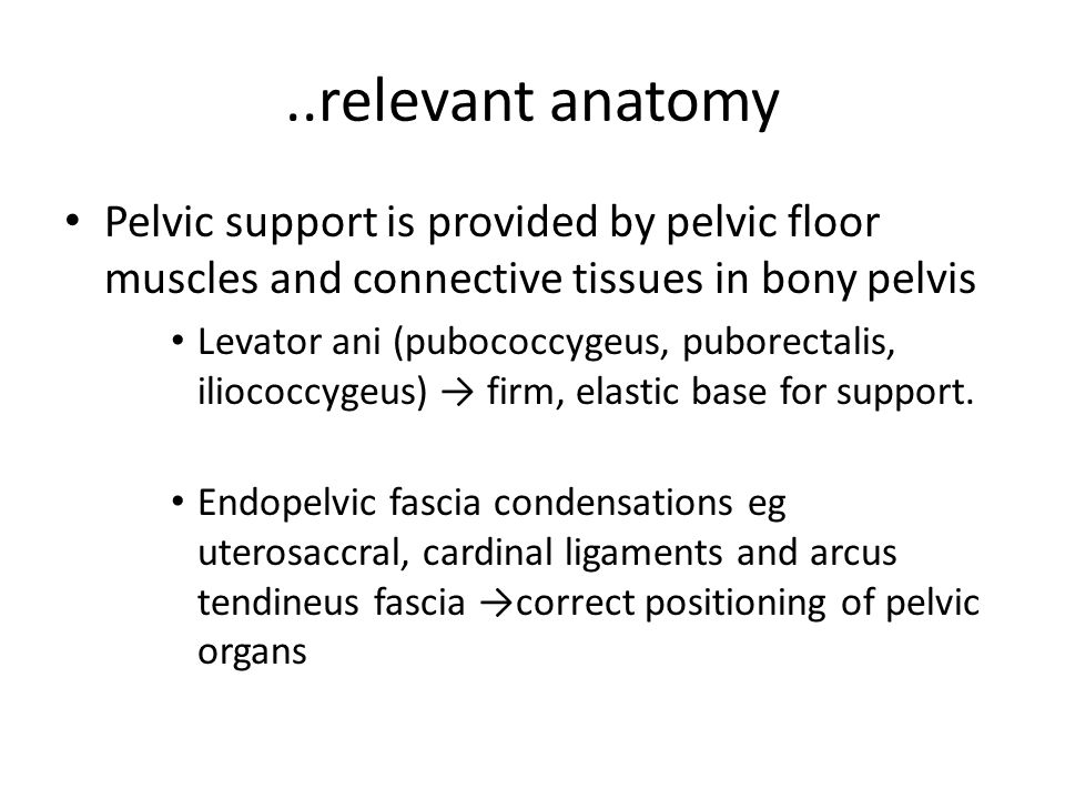 ..relevant anatomy Pelvic support is provided by pelvic floor muscles and connective tissues in bony pelvis.