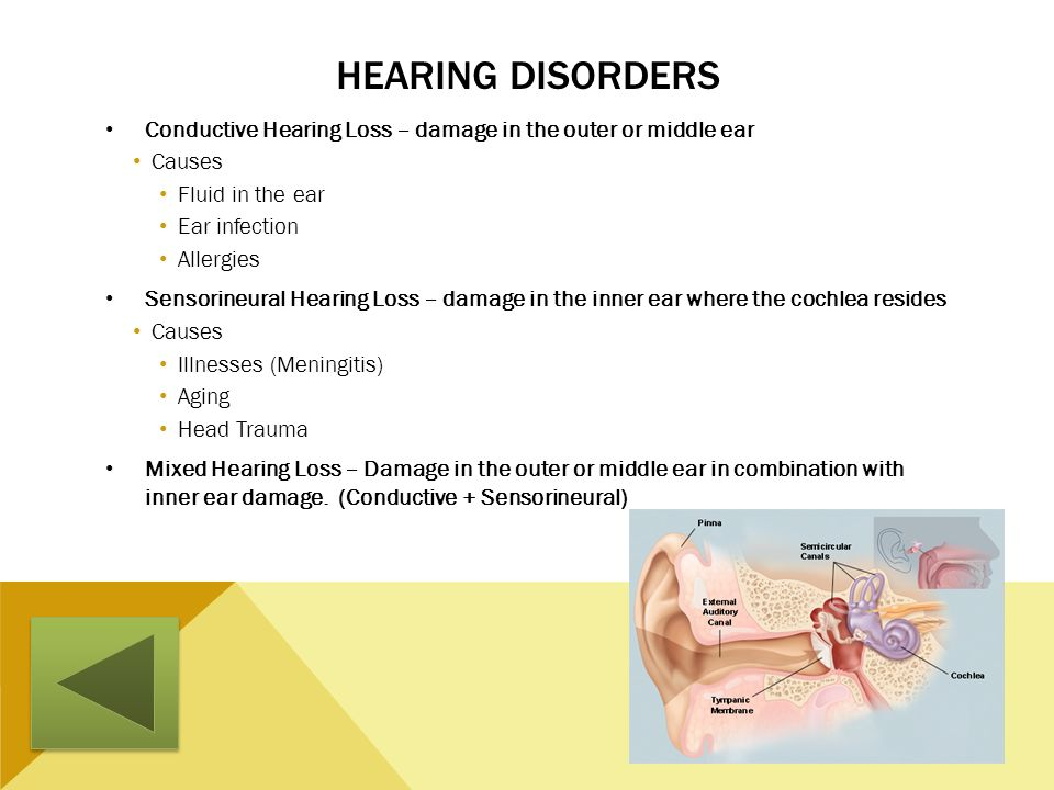 Hearing Disorders Conductive Hearing Loss – damage in the outer or middle ear. Causes. Fluid in the ear.