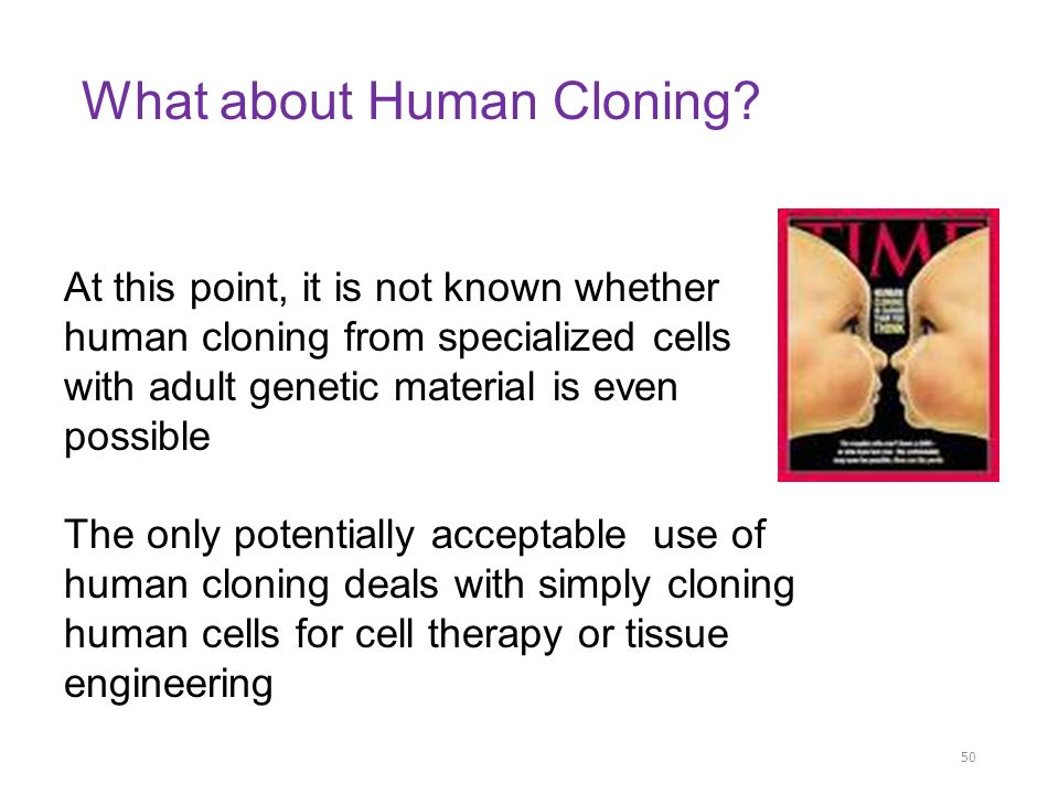 a overview of the idea of human cloning Cloning is the process of producing genetically identical individuals of an organism either naturally or artificially in nature, many organisms.