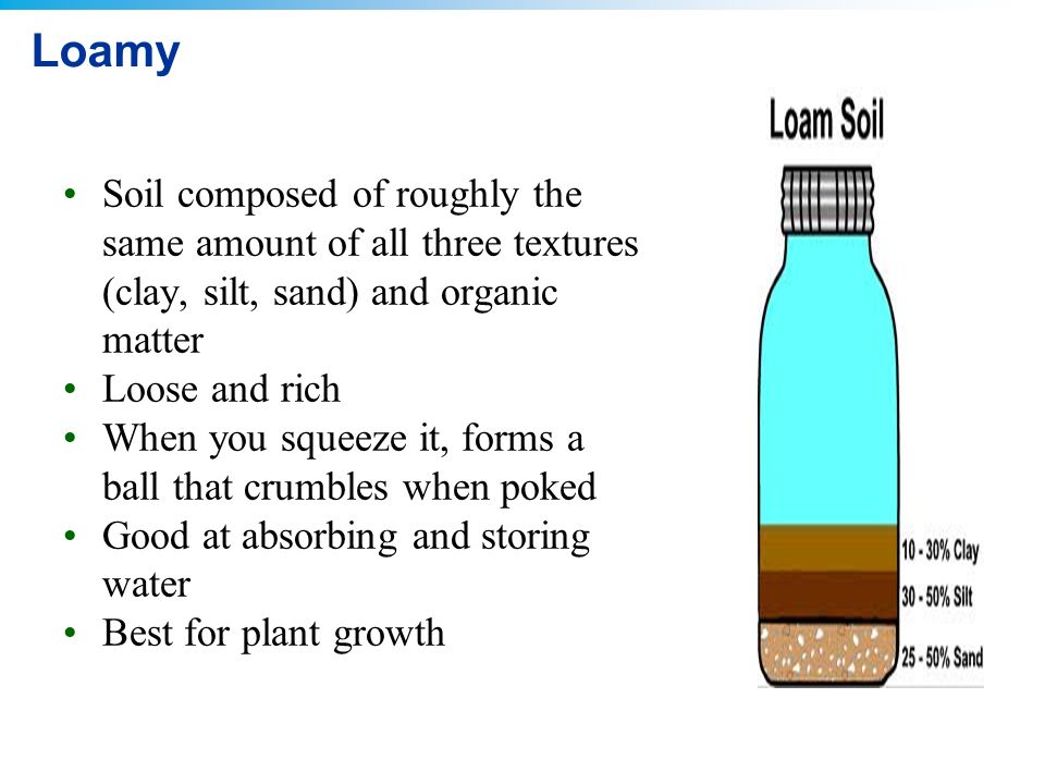6 food and soil ppt download for What is dirt composed of