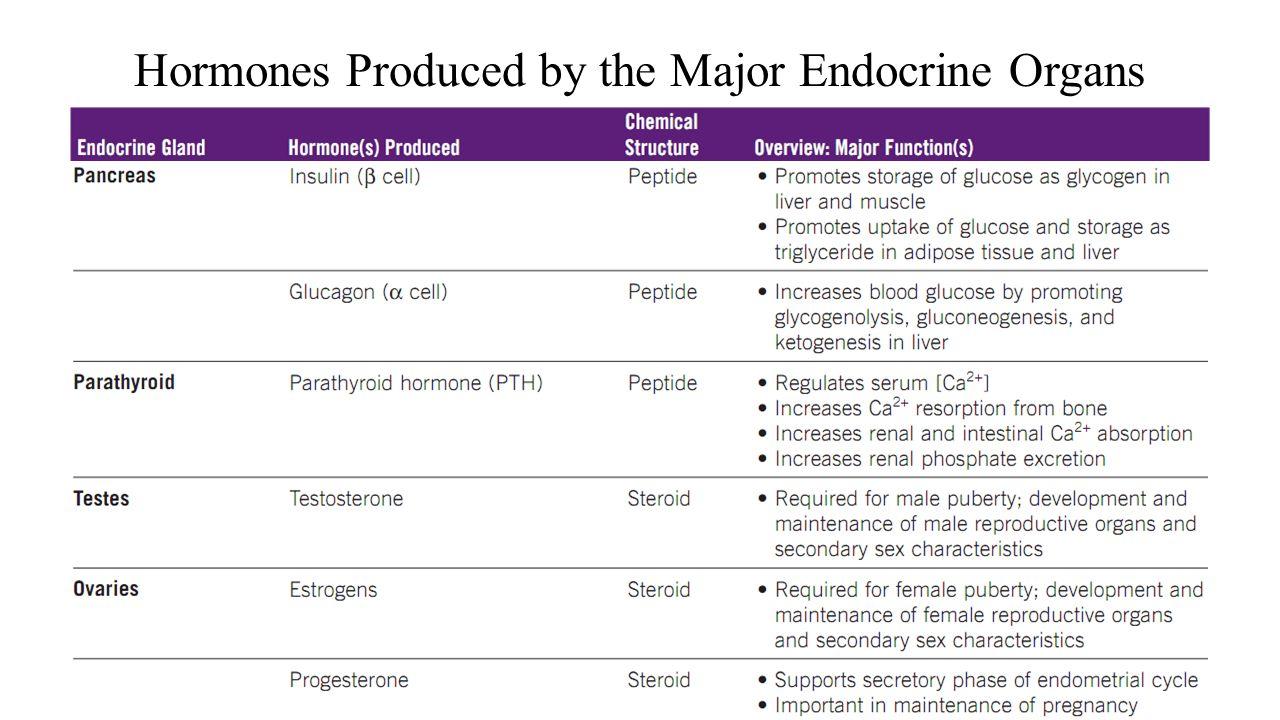 male hormone balance pills