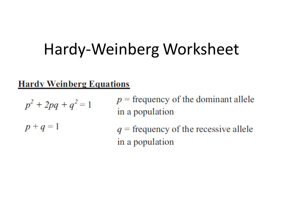 Hardy Weinberg Worksheet Ppt Video Online Download
