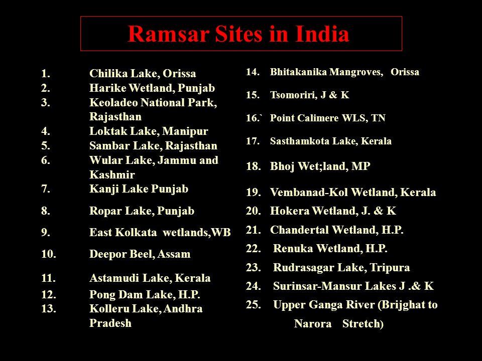 Ramsar Sites in India 1. Chilika Lake, Orissa